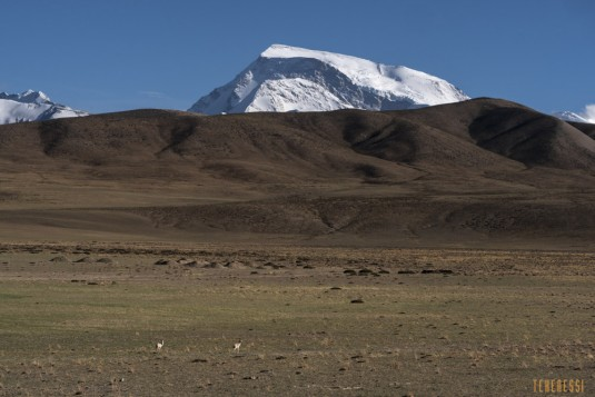 n764/Gurla.Mandhata.Kailash.Tibet.ski.expedition.trek.4.jpg