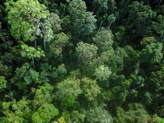 n779/Sakaleona.Madagascar.trek.9.jpg