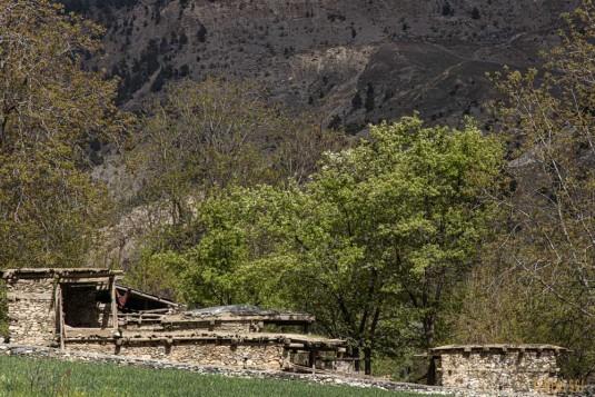n816/Ski.Hindukush.Chiantar.glacier.Chitral.Borogil.Pakistan.travel.1.jpg