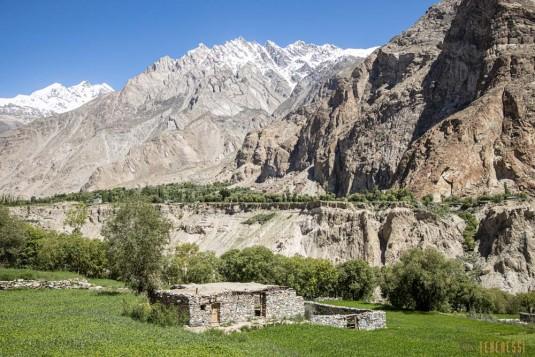 n842/Pakistan.K2.Gondogoro.Trek.10.jpg