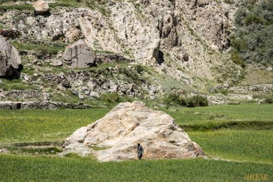 n842/Pakistan.K2.Gondogoro.Trek.4.jpg